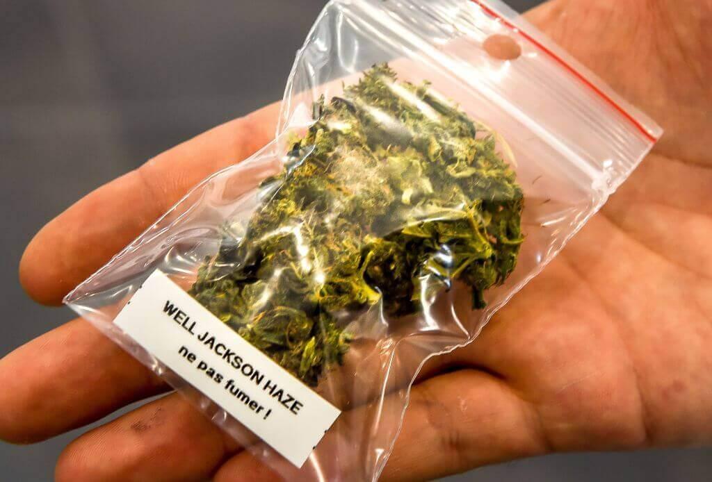 legalizemarijuana-73142-78727-73629.jpg