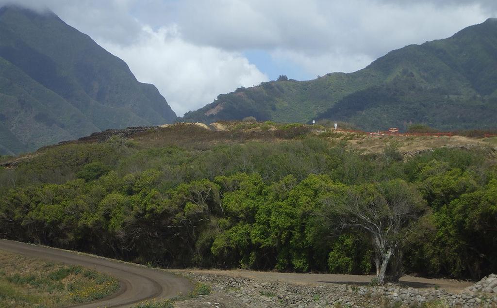 Haleki'i Pihana Heiau State Monument