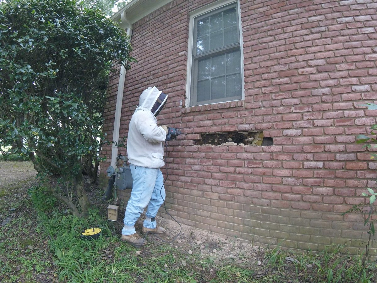 taking out first bricks