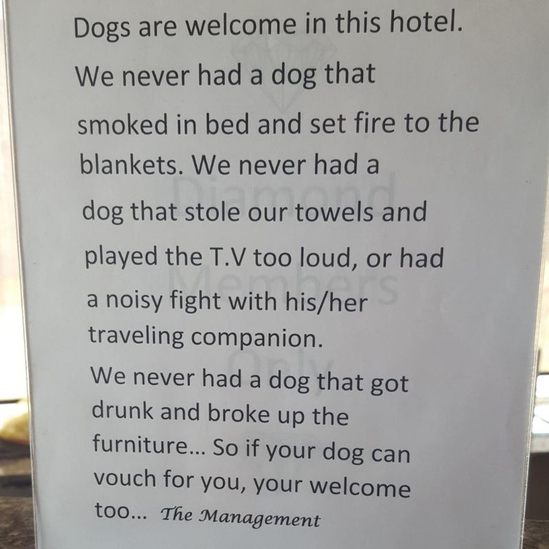 dogs are welcome sign