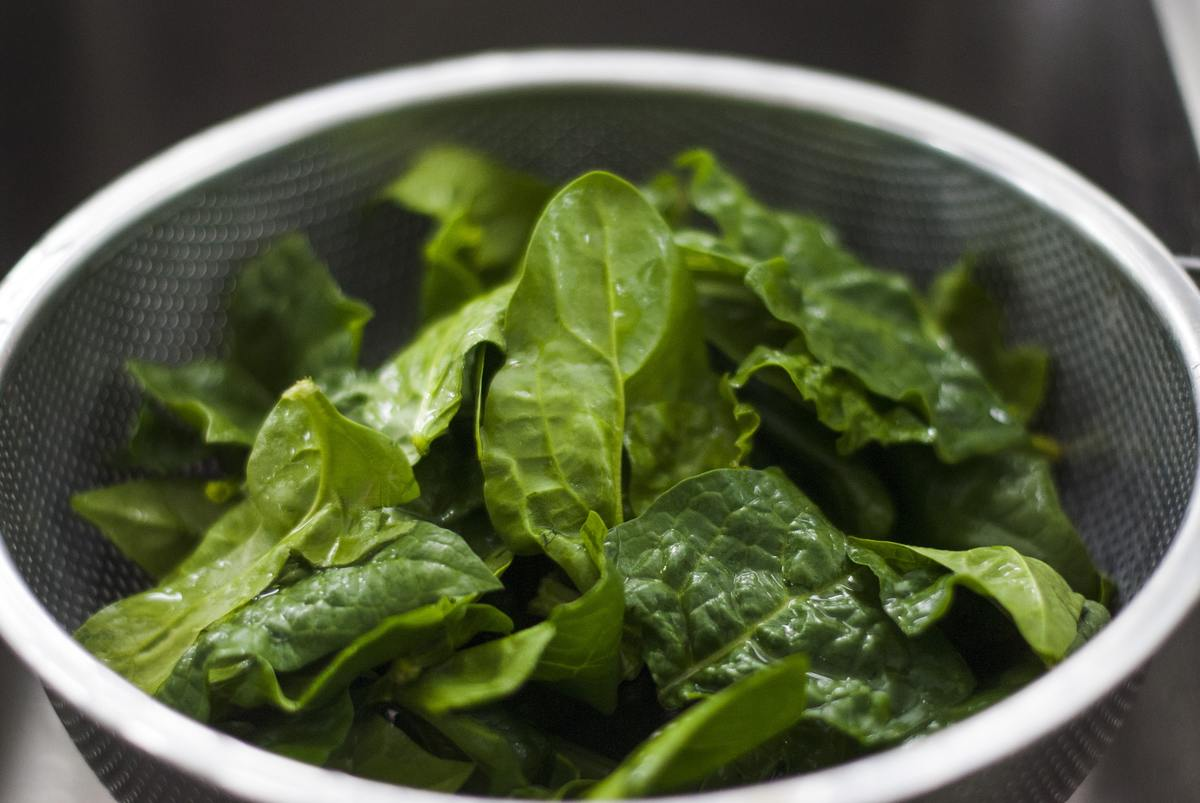 Spinach sits in a strainer to be rinsed.