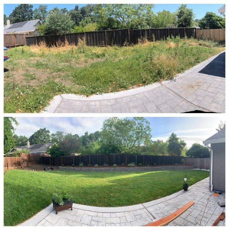 a before and after backyard make over