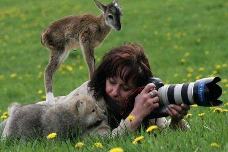 wildlife-photographer-12