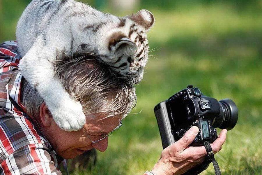 wildlife-photographer-13