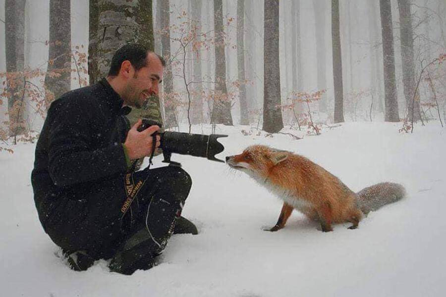 wildlife-photographer-15