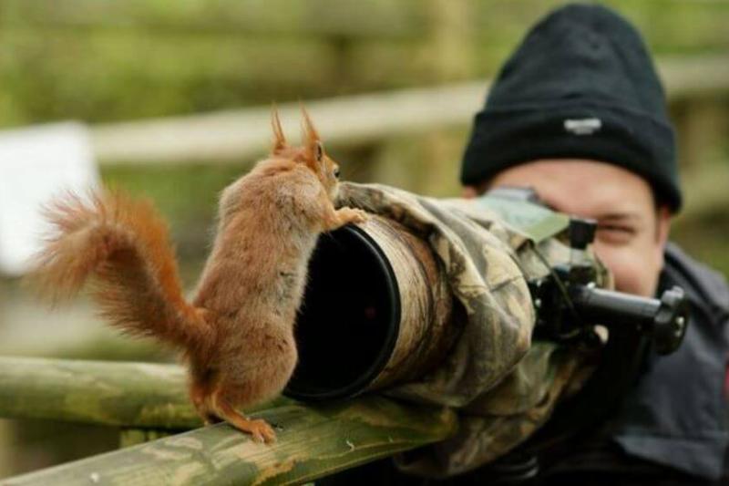 wildlife-photographer-17