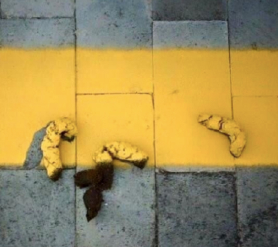 Dog Poo Yellow Line.jpg